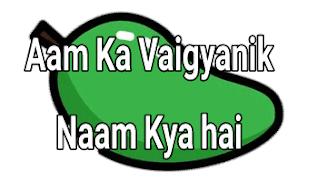 Aam Ka Vaigyanik Naam Kya hai | आम का वैज्ञानिक नाम क्या है ?