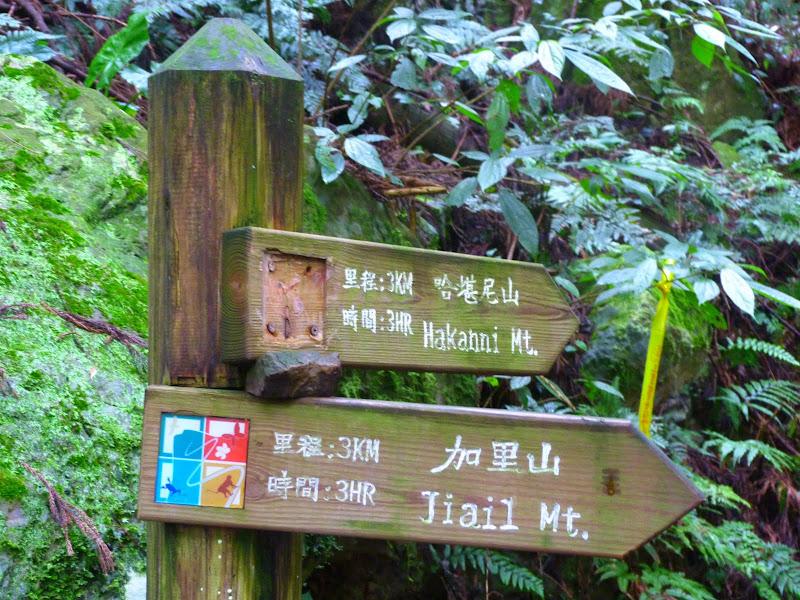 Petite randonnée au sud de Taufen, dans la région de Miaoli - P1330586.JPG