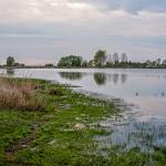 20150504_Fishing_Malynivka_029.jpg