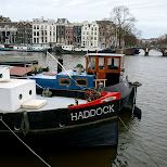 haddock ship in amsterdam in Amsterdam, Noord Holland, Netherlands
