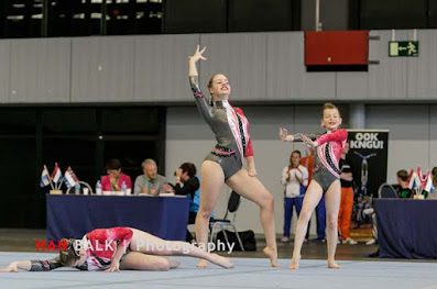 Han Balk Fantastic Gymnastics 2015-8644.jpg