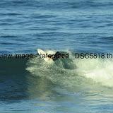 _DSC5818.thumb.jpg