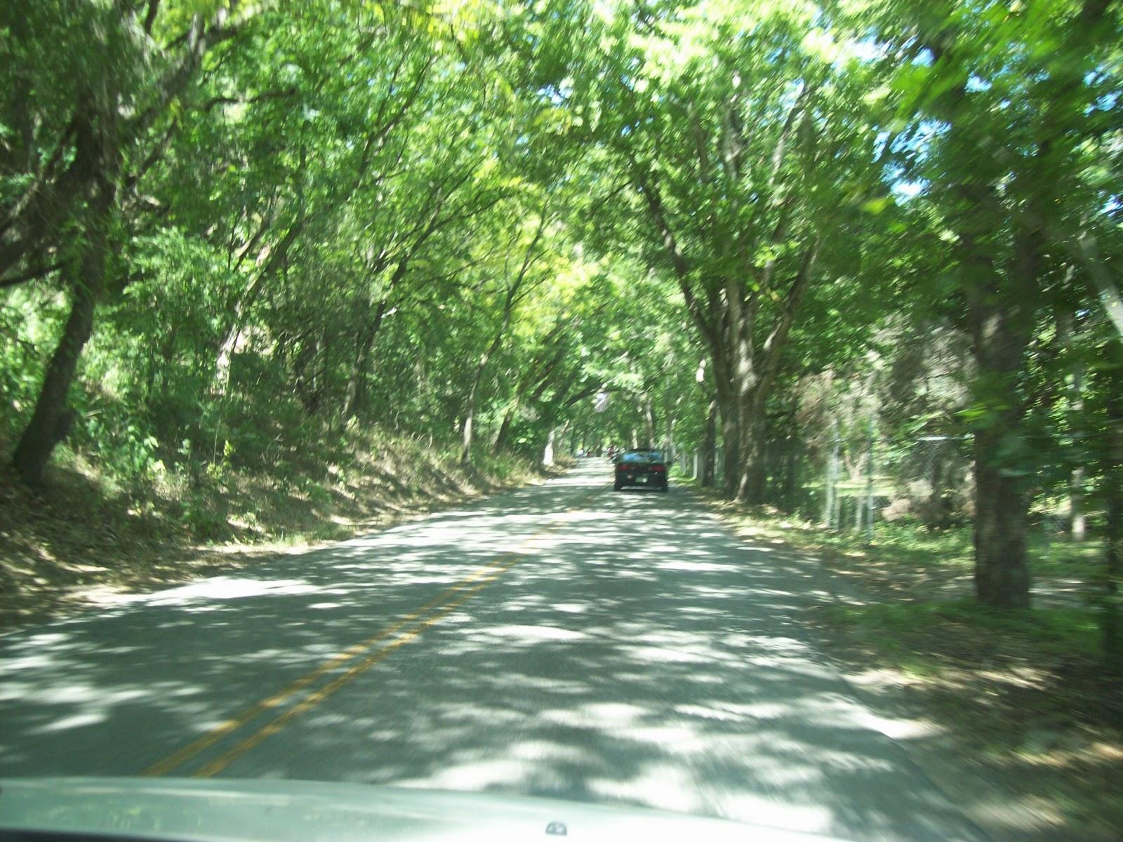 Summer Vacation 2008 - 100_0058.JPG