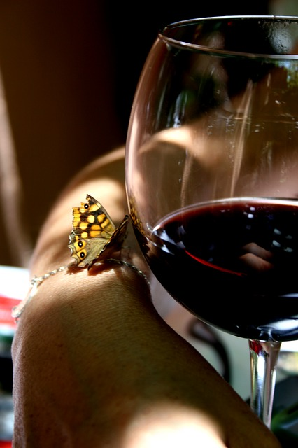wine-201933_640.jpg