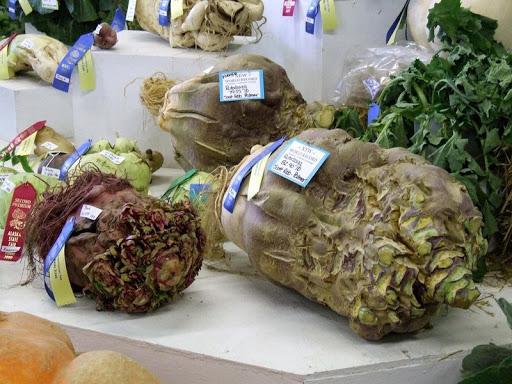 alaska-gigante-verdure-2