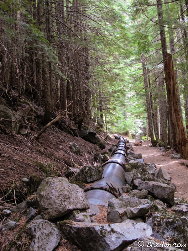 A section of penstock briefly travels alongside a popular hiking trail.