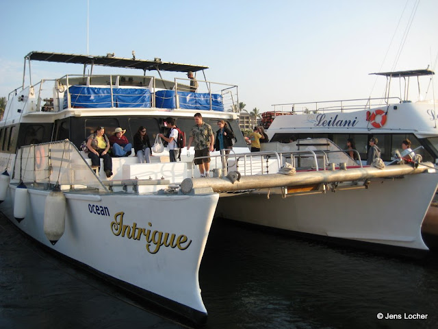 2010 - IMG_3119.JPG