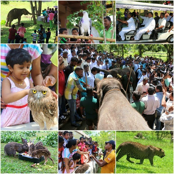 http://www.gossiplankanews.com/2015/04/new-zoo-at-pinnawala-opening-day-photos.html#more