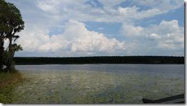 View over Lake Hammond