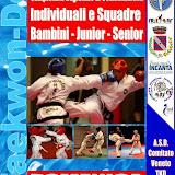 Campionato Regionale Combattimenti 2013