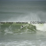 _DSC7242.thumb.jpg