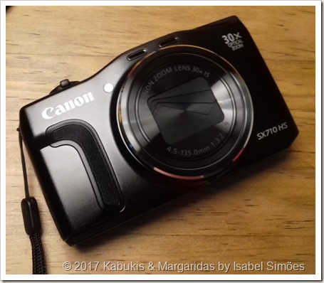 Canon Powershot SX710 HS Wi-Fi