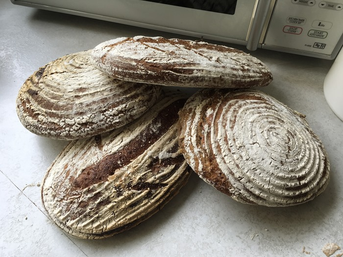 21 Sourdough 21-7-18