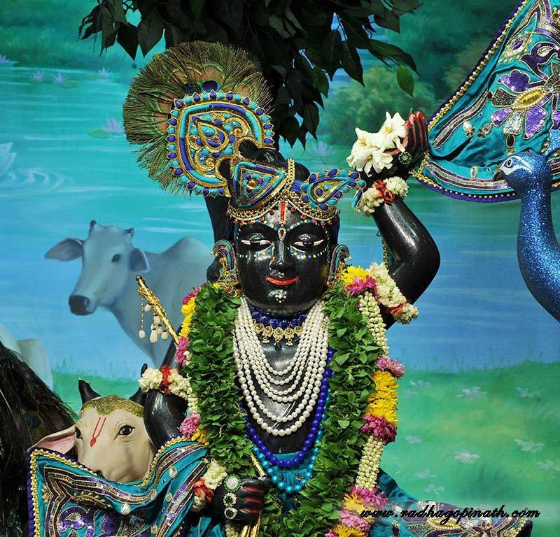 ISKCON Chowpatty Deity Darshan 03 Mar 2016  (1)