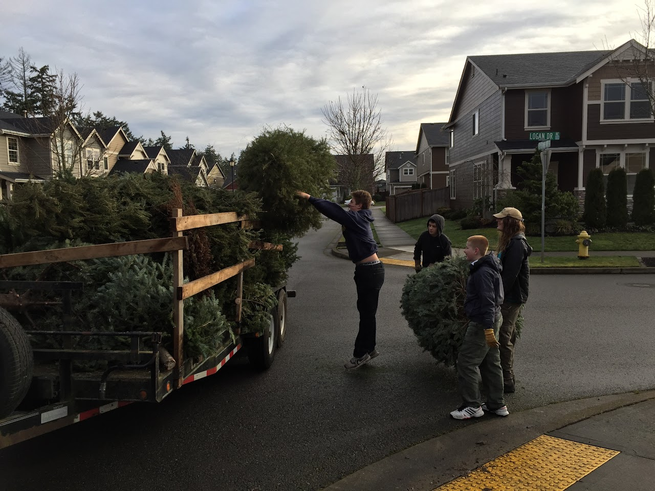 Christmas Tree Pickup - January 2016 - IMG_5729.JPG