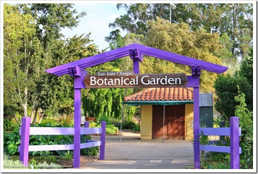 Etonnant 160321_SLOBG_0001. Located In El Chorro Regional Park On The Outskirts Of San  Luis Obispo, San Luis Obispo Botanical Garden ...