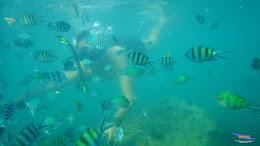 family trip pulau pari 090716 Pentax 09