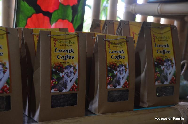 luwak coffee- kebune bali