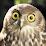 Browniewaffels's profile photo