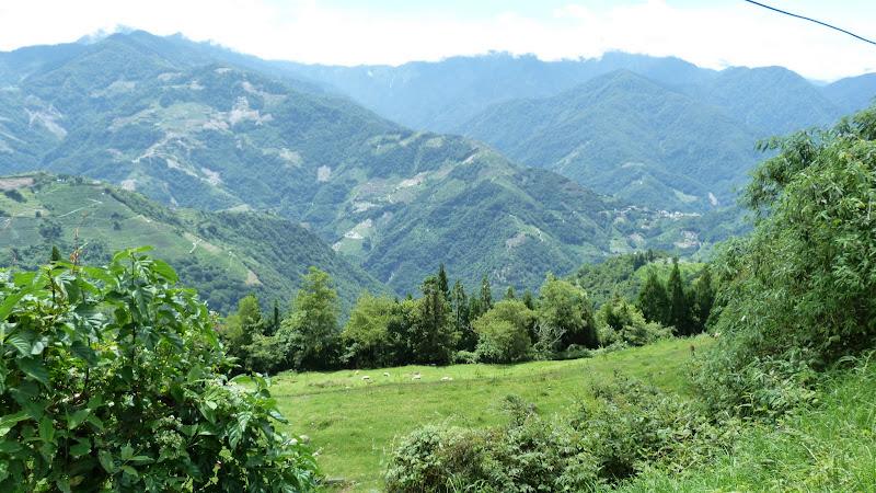 De Puli a Wuling 3275 metres d altitude J 9 - P1160493.JPG