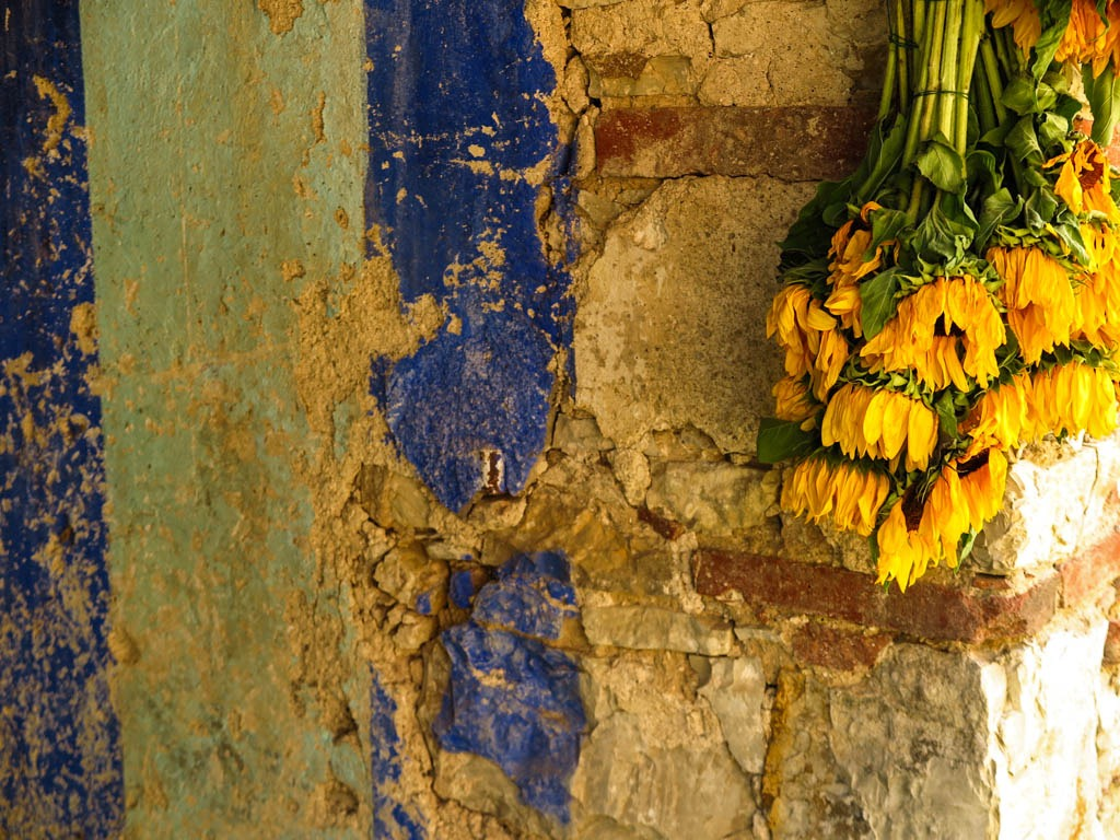 [Slow-Flowers-Italy-235]
