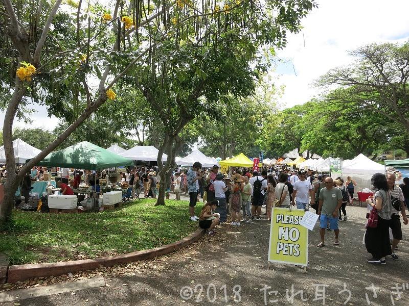 ハワイ旅行⑲ KCCファーマーズマーケットにレンタカーで行ってみた 駐車場や行き方 レビュー・口コミ