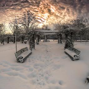 winter sunset by Razvan Teodoreanu - Landscapes Sunsets & Sunrises