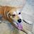 Tina Murrill avatar image