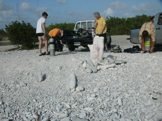 Bonaire 2011 - PICT0087.JPG