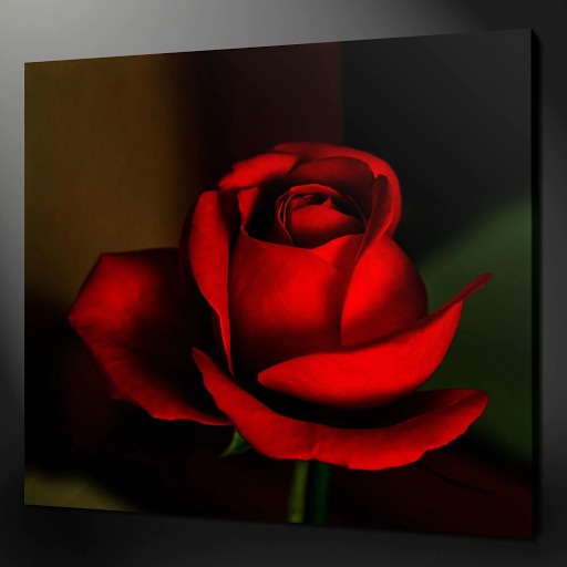 rose-painted-