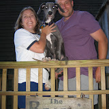 The Dynamite Danes Family! - Maine%2B042.jpg