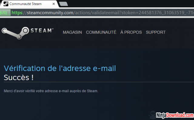 Step 3 - Verify steam email