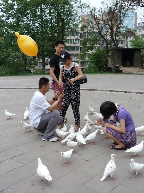 CHINE.SICHUAN.LESHAN puis ZIGONG - 1sichuan%2B425.JPG