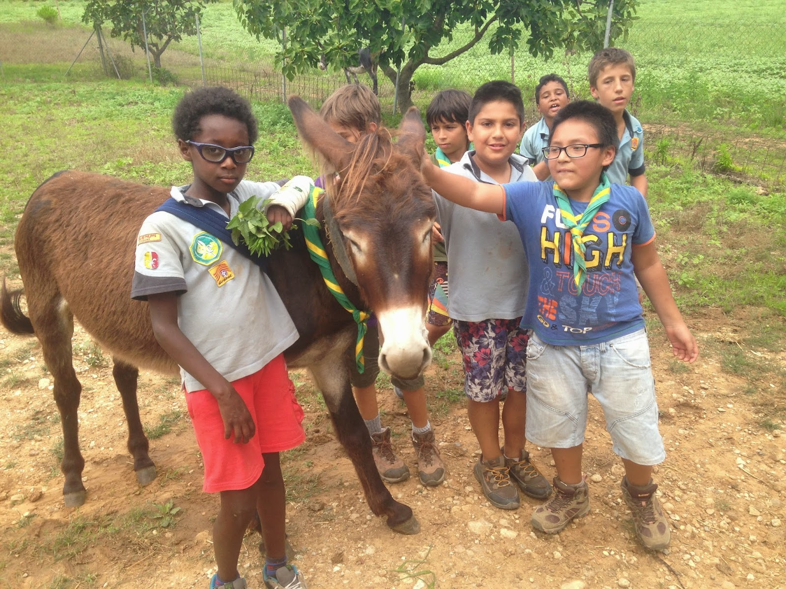 Campaments Estiu Cabanelles 2014 - IMG_0057.JPG