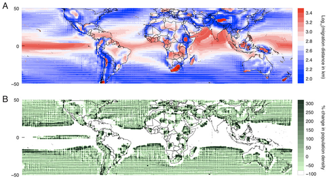 The shortest temperature-preserving migration is computed for each pixel under 2°C of global mean warming. Populations that are initially in the ocean (on land) are constrained to remain in the ocean (on land). (A) Logarithm of the minimum distance that an organism must travel to maintain the average temperature of its environment, plotted as a function of the organism's initial location. (B) The percent change in population density that occurs if a hypothetical population were initially distributed uniformly over the globe and all members of that population undertake the minimum-distance temperature-preserving displacement in (A). Graphic: Hsiang and Sobel, 2016 / Scientific Reports