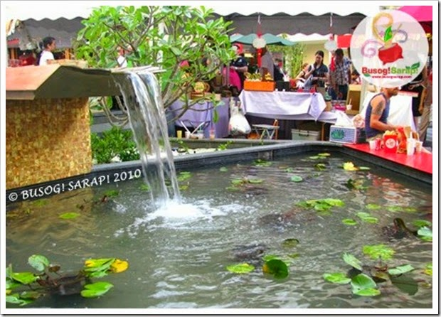 F.VALLEY WATER FEATURE © BUSOG! SARAP! 2010