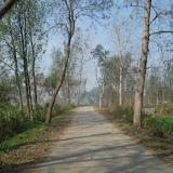 Land Haridwar