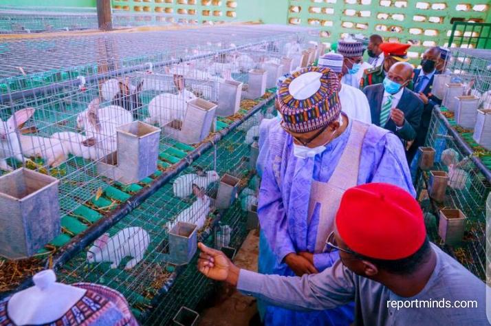 Photo Report: Buhari commissions NALDA Integrated Farm Estate in Katsina
