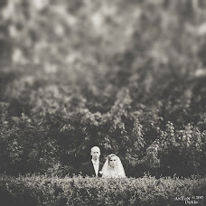 Wedding photographer Anton Demin (adee). Photo of 11.09.2013