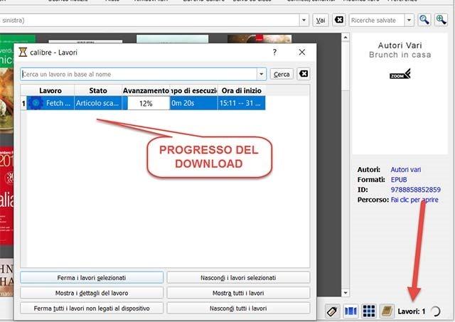 processo-download