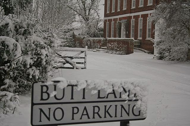 Woodhurst In the Snow - February 2009 - picture34.jpg