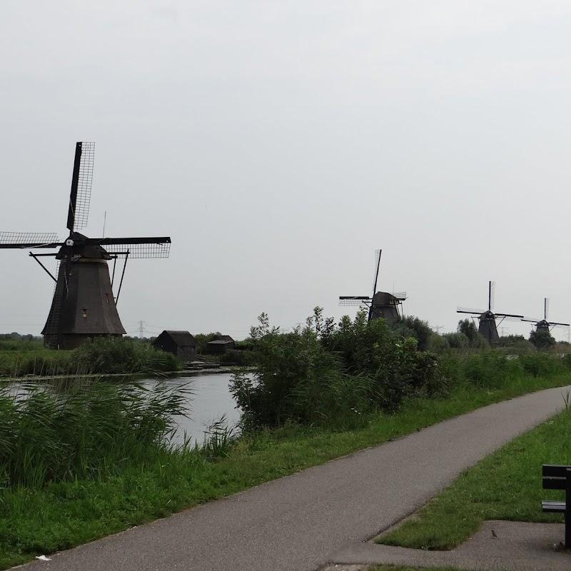 Day_6_Kinderdijk_42.JPG