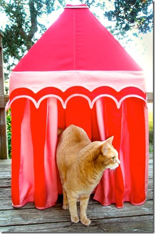 Custom Design Kitty Cat Cabana from Boutique Tents