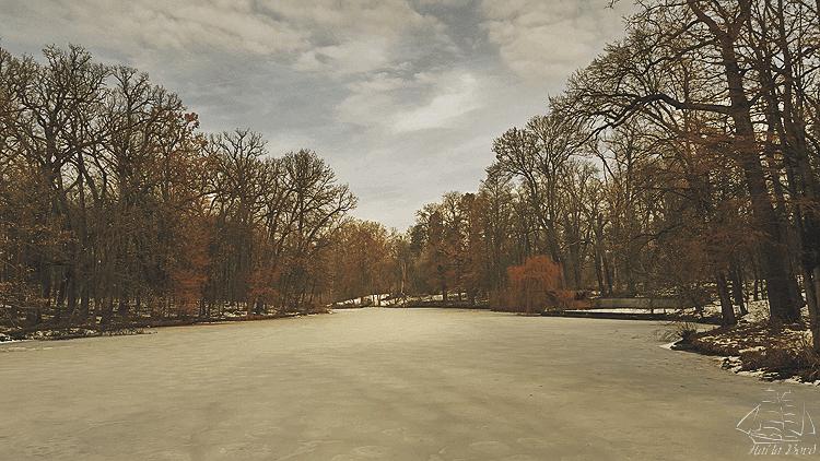 lac parc stirbey buftea