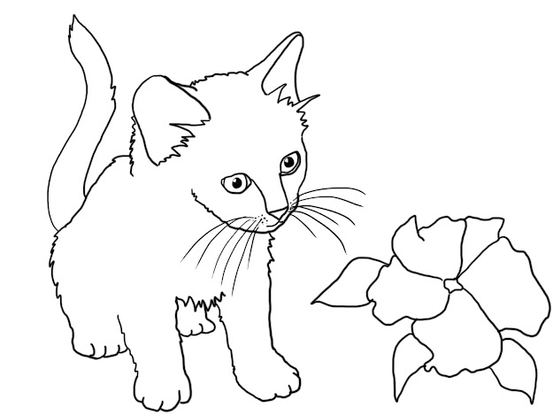 Printable Kitten Coloring Pages Cartoonrocks