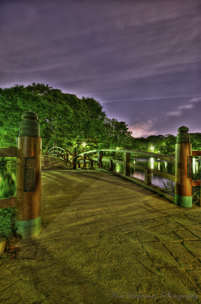 Photo: Ikezuki Bridge at Night