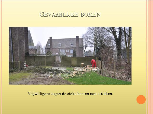 Jaaroverzicht 2012 locatie Hillegom - 2070422-14.jpg