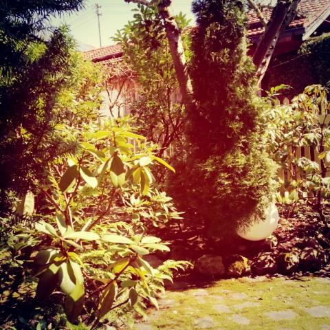 Der elterliche Garten