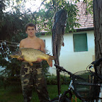 Szőnyi Gábor 6 kg, 22 kg