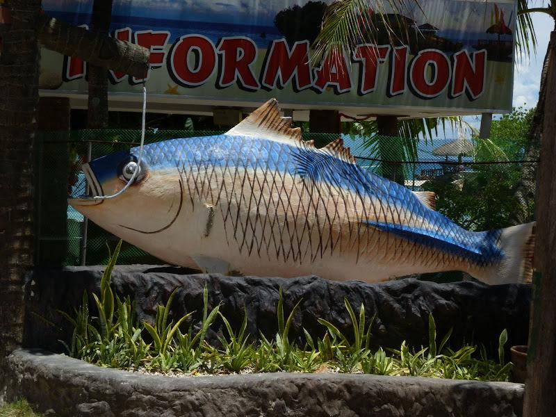 Camotes et Poron island - philippines1%2B888.JPG